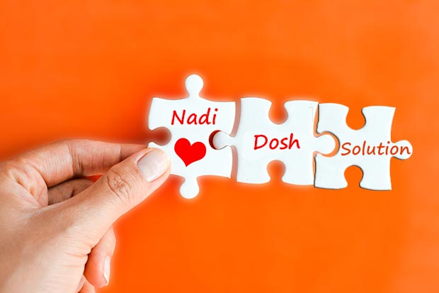 nadi Dosha Solution
